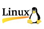 Linux Virtual Server Professional